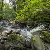 Small Falls in Cwmdu