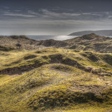 Oxwich Dune #2
