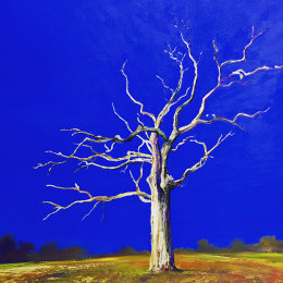 Blue Tree. Oil on Canvas 60x60cm £600