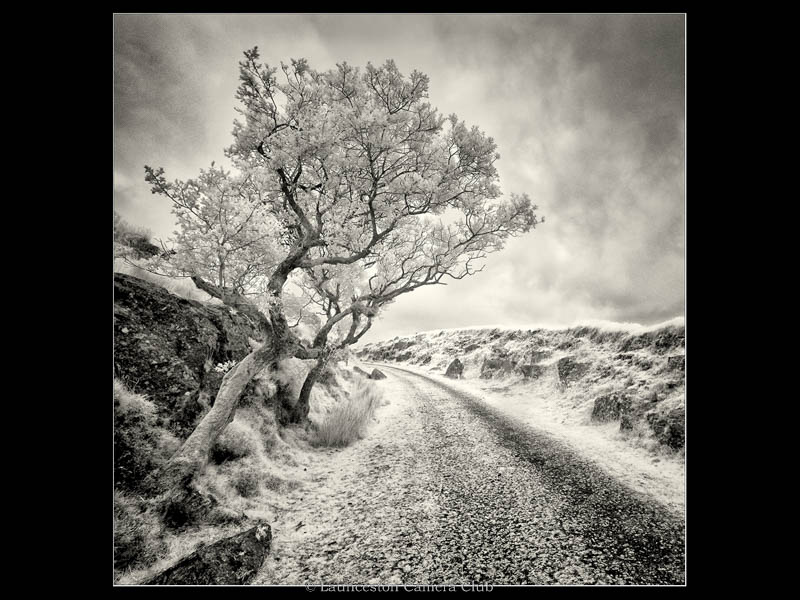 101-The Qaurry Track-Nick Bodle-Launceston CC wb