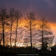 11 Geoff Trevarthen Trees at Sunset Second Place