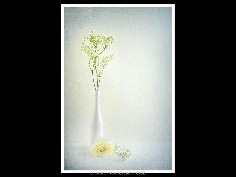133-Serenity-Heather Bodle-Launceston CC wb