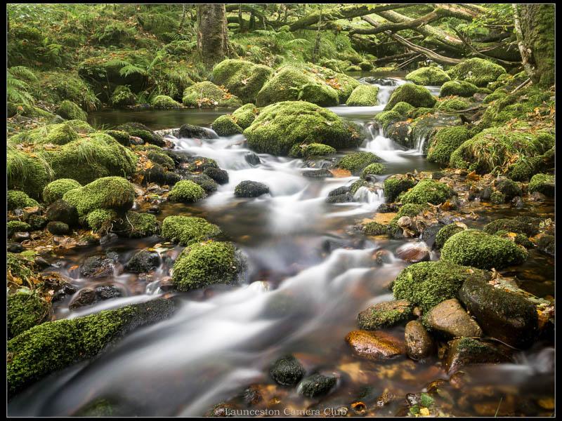 21 Dartmoor Stream Geoff Trevarthen Commended
