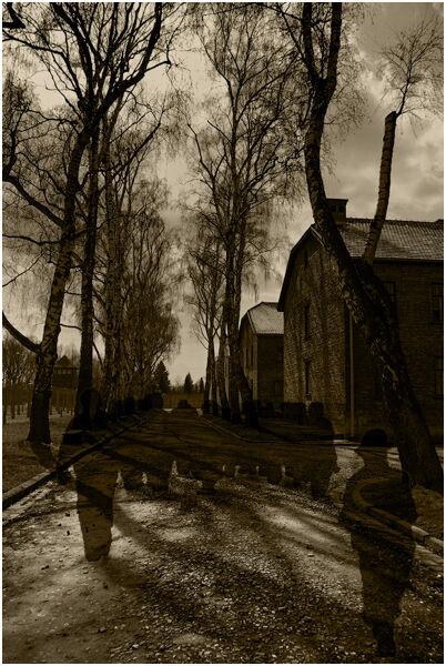 C Mike Pettett_Auschwitz Shadows