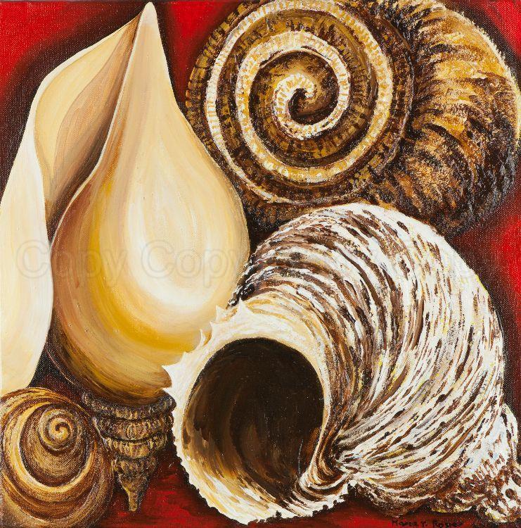 Ballyholme Shells 41x41 Acrylic