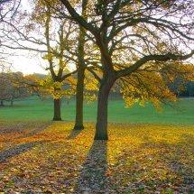 Chantry Park Ipswich Suffolk
