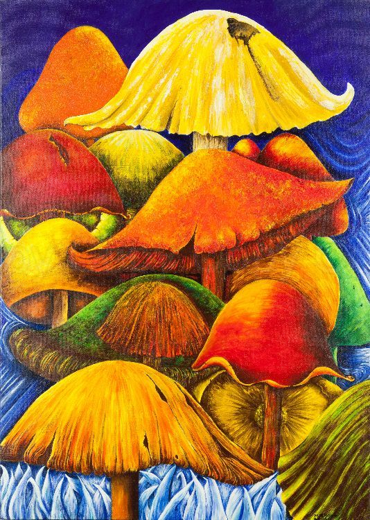 Magic mushrooms 50x70 Acrylic