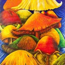 Magic mushrooms 50x70 Acrylic