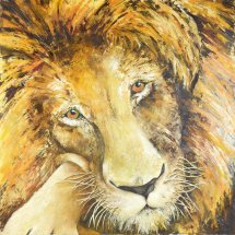 Lion Oil on canvas 75x75