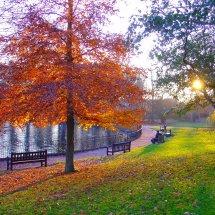 Round Pond Christchurch Park Ipswich