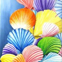 Scallop shells 50x100 Acrylic