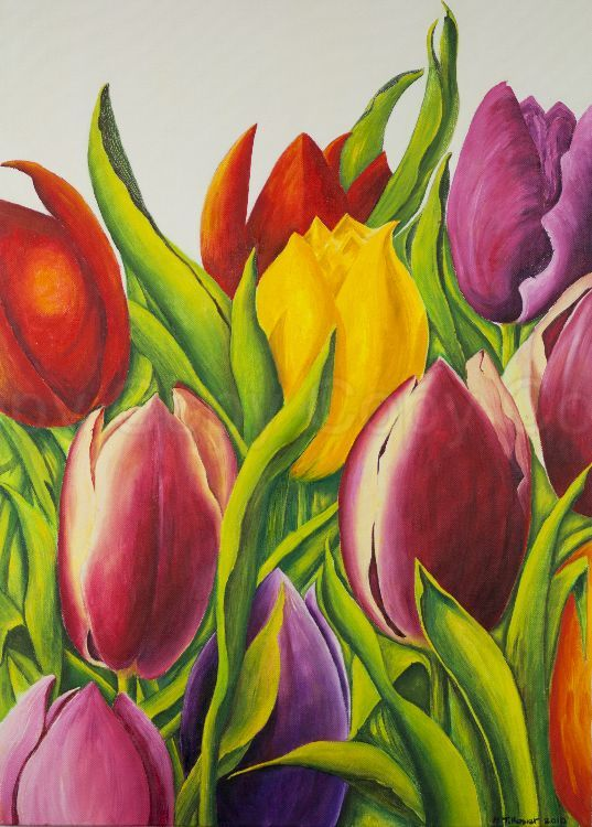 Tulips 50x70 Oil