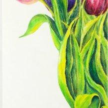 Tulips in a vase 50x70 Acrylic