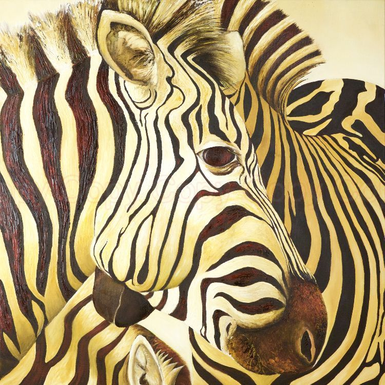 Zebras Oil on canvas 75x75