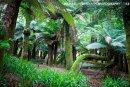 Kells Garden
