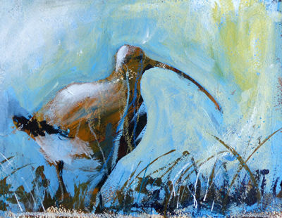 CURLEW ON THE SOLWAY 40 x 30cm mixed media SOLD