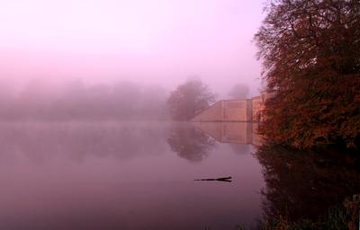 Blenheim Lake in the Mist