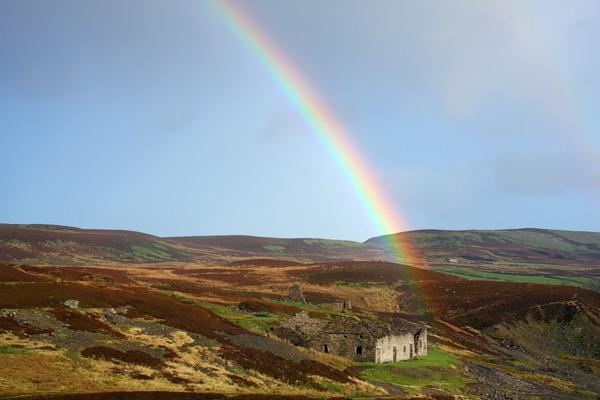 Rainbow I...