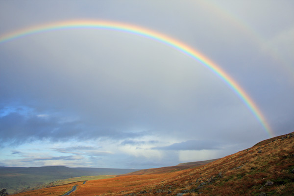 Rainbow II...