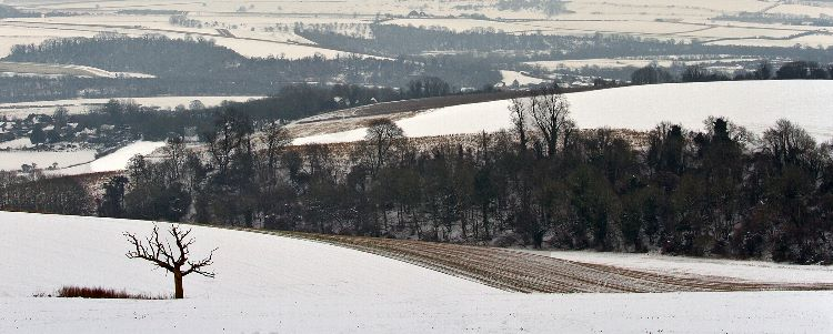 Bury Hill in Winter
