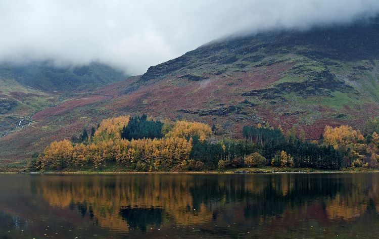Larches Buttermere