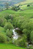 Springtime Yorkshire Dales
