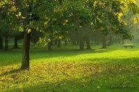 Parco Legnano (Lombardia)