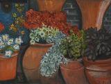 - Terracotta Pots -