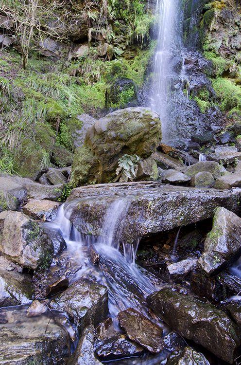 Mallyan Spout waterfall