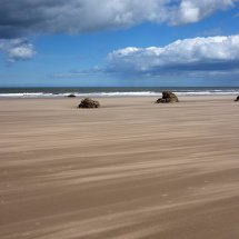 A windy Bempton beach
