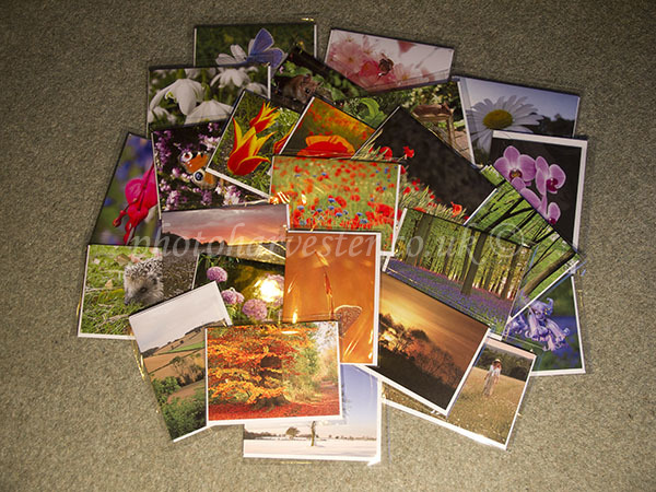 Sample 1 of our greeting card selection.