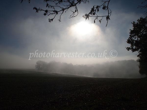Sun through a Mist