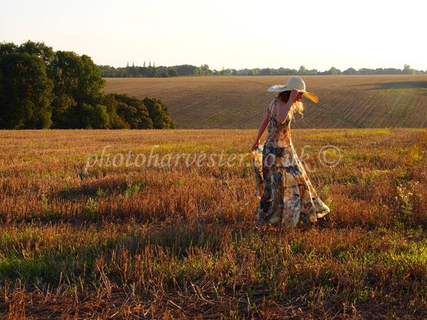 Summer meets Autumn across the farmland