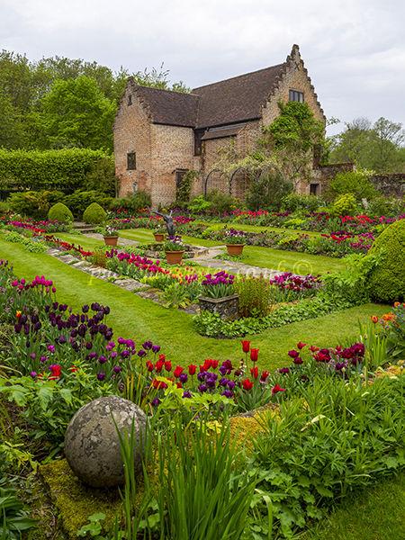 Chenies Manor Sunken garden Tulips with Pavilion