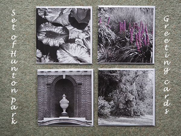 Hunton Park set of Greeting Cards