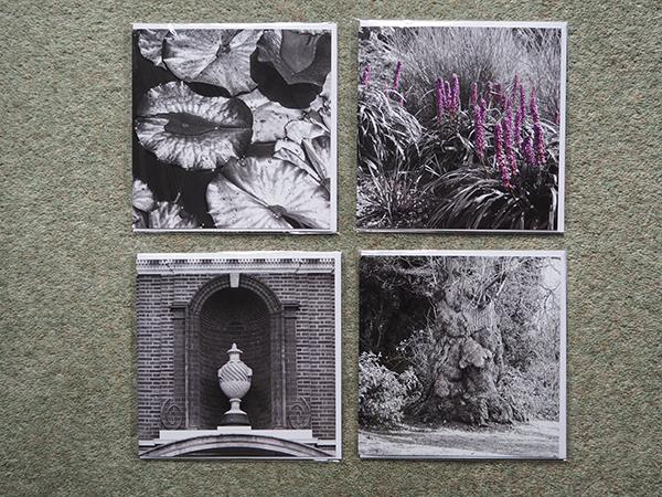 Hunton Park set of Greeting Cards