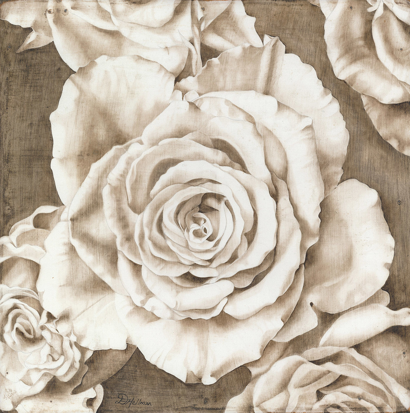 Sepia roses 2