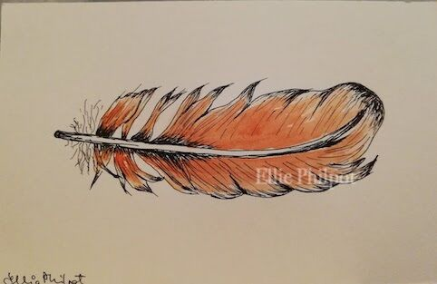 Feather 1. Postcard.