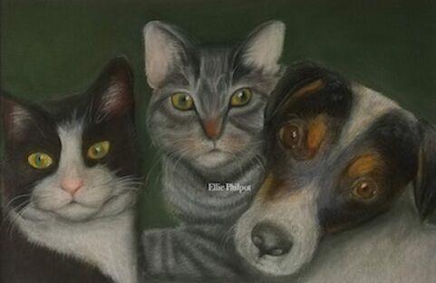 Felix, Bailey and Holly