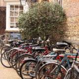 Typical Cambridge scene