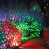 Anglesey Abbey's stunning winter lights 2013