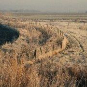 Frosty county walk