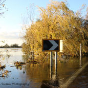 Winter Flooding at Welney