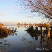 Winter Flooding across the Washes at Welney