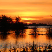 Sunset over flooded washes