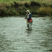 Fly Fishing in the River Derwent on the Chatsworth Estate