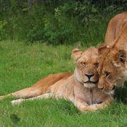 Mum and daughter
