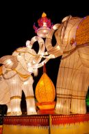 Elephant lantern display