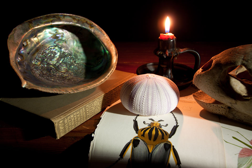 Still life with d'orbigny prints, sea urchin skin, candle, sea turtle skull, abalone shell and a early copy of Darwin's Voyage with the Beagle. Canon 50D, Canon EF-S 10-22mm f/3.5-4.5 USM, 1,3s, f/4,5, iso 100, tripod.