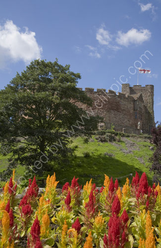 Tamworth Castle, flag and flowers